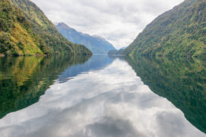 Doubtful Sound, Fiordland National Park, Südinsel, Neuseeland,