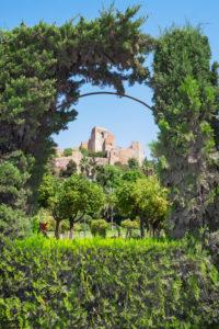 Gibralfaro castle, Malaga, Andalucia , Spain, Europe