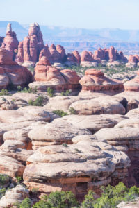Sandsteinspitzen, Chesler Park, der Nadelbezirk, Canyonlands National Park, Utah, USA
