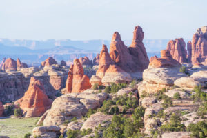 Sandstone pinnacles, Chesler Park, The Needles district, Canyonlands National Park, Utah, USA