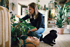 Full length of woman crouching by pug potting plant in room at home