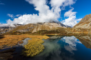 Autumn at 2300 meters above sea level at the Crap Alv Laiets on the Albula Pass, canton of Grisons, Switzerland