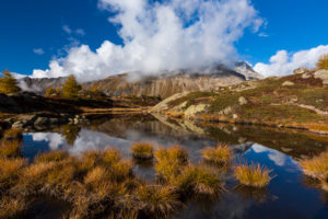 Autumn colours at the Crap Alv Laiets, a bog on the Albula Pass in the Swiss canton of Grisons