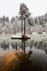 The first snow in November covers Lake Cresta near Trin with a winter dress, Canton Grisons, Switzerland