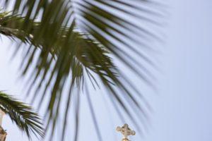 Palm leaves, cross,