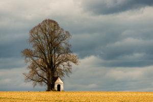 Frühling, kleine Kapelle mit Baum