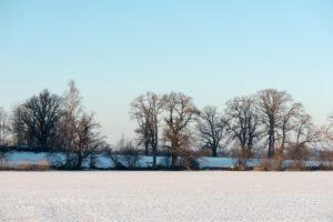 Frozen Staffelsee