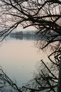 at the lake, Bavaria, landscape, winter, Tachinger See,