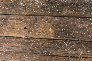 Spring hail, wood
