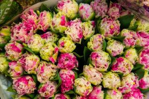 Spring flowers, florist, flower market