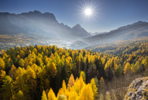 Sorapiss, larches, sun, Cortina d'Ampezzo, Veneto, the Dolomites, Italy