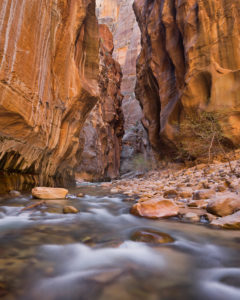 Virgin River, Narrows, Schlucht, Zion National Park, Utah, USA