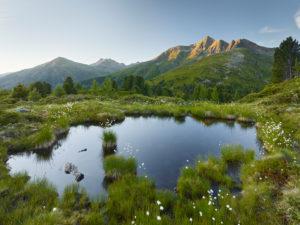 View from the Hirschbichl into the Defereggental, Kahorn (2692m), Hohe Tauern, Osttirol, Tyrol, Austria
