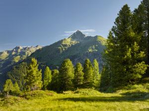 Blick vom Hirschbichl ins Defereggental, Hutner (2885m), Hohe Tauern, Osttirol, Tirol, Österreich