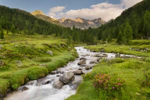 Debantbach (brook), Debanttal, national park Hohe Tauern, Osttirol, Tyrol, Austria