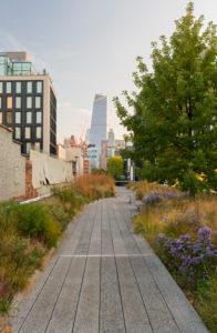 The High Line park, Manhattan, New York city, New York, the USA