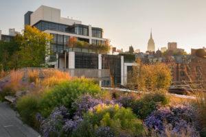 The High Line park, empire State Building, Manhattan, New York city, New York, the USA