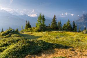 Émosson, Wallis, Schweiz (Vordergrund), Aiguille Verte, Mont Blanc, Haute-Savoie, Frankreich (Hintergrund)