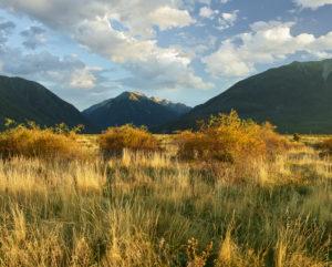 Waimakariri Valley, Arthur's Pass National Park, Canterbury, South Island, New Zealand, Oceania