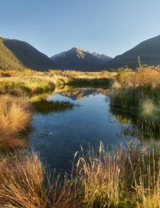 Waimakariri Valley, Arthur's Pass Nationalpark, Canterbury, Südinsel, Neuseeland, Ozeanien