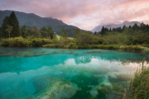 Zelenci, source of the Sava Dolinka, Slovenia, Europe