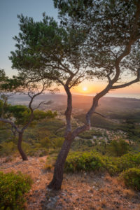 View from Sant Salvador Monastery, Felanitx, Mallorca, Balearic Islands, Spain