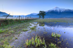 Sunrise on the flooded land of the Natural Reserve of Pian di Spagna Valtellina Lombardy Italy Europe