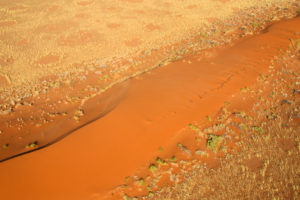 Aerial view of the typical red sand surrounded by plants in the dry landscape of Namib Desert Namibia Southern Africa