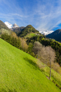 Green meadows of Dosso Chierico along the historical hiking path Via Priula Albaredo Valley Orobie Alps Lombardy Italy Europe