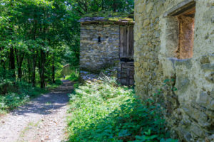 Stone houses and ruins among the green woods on the path leading to Dossa Gerola Valley Sondrio Valtellina Lombardy Italy Europe