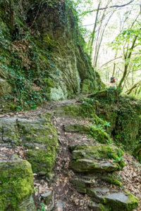 Adventurous path with stone steps in the Ehrbach gorge