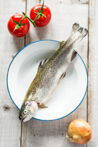 Trout fresh from the market on a maritime plate with two red tomatoes and an onion on a white wooden background