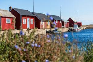 Typische rote Holzhäusser in einer Reihe im Hafen an der Kaimauer.
