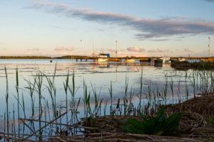 Abendstimmung über dem Steg mit kleinen Booten, Schilf im Vordergrund.