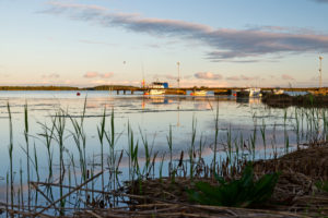 Evening mood over the jetty with small boats, reeds in the foreground.