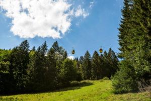 Two Belchenbahn gondolas float above the forest