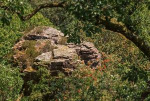 Blick auf Battertfelsen von der Aussichtsplattform Ritterplatte aus.
