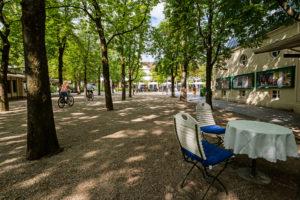 Unter Bäumen auf dem Weg zum Kurhaus in Baden-Baden