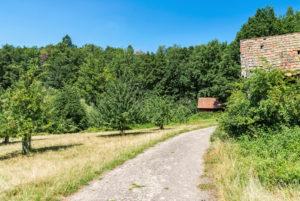 Weg durch Streuobstwiesen, alte Scheune.