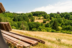 Bench in the countryside