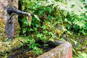 Steintrog, Brunnen am Wegesrand
