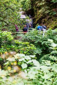 Eine Gruppe asiatischer Touristen besucht den Geroldsauer Wasserfall.