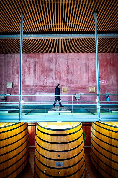 wine cellars of Pago de Carraovejas of the denomination of origin Ribera del Duero in Valladolid Spain Europe