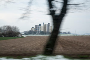 Hochhaus, Baum, Winter, Feld