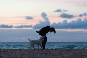Junge, Hund, Abend, Strand, Spiel, Meer, Freundschaft, Haustier, Silhouette, Dämmerung, Spaziergang