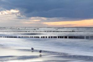 Ostsee, Ostseeküste, Meer, Strand, Wellen, Buhnen, Pfähle, Abend, Sonnenuntergang, Möwen,