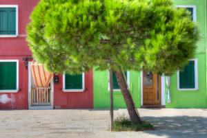 Haustür, Bunt gestrichene Häuser, Burano, Venedig, Venetien, Italien, Europa