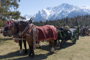 Georgi ride, riders, carriages, Mittenwald, Bavaria, Upper Bavaria, Germany,