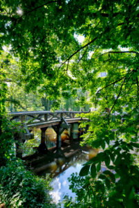 Welfenschloss, Wassergraben, Weserrenaissance, historisch, Gifhorn, Niedersachsen, Lüneburger Heide, Deutschland, Europa