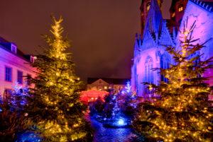 St. Martini, church, winter theatre, blue hour, night, Braunschweig, Lower Saxony, Germany, Europe